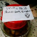 201003110746